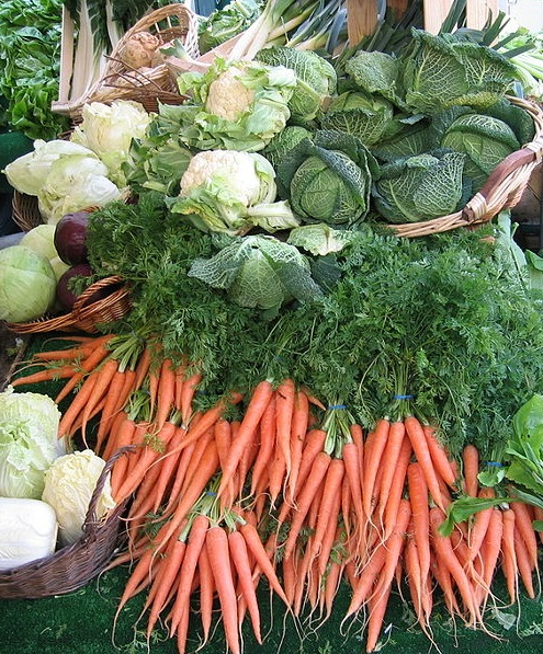 The Basics of a Whole Food, Nutrient Dense Diet