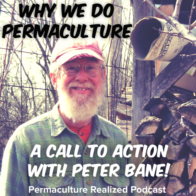 Permaculture Realized Podcast Episode 1, Why We Do Permaculture a Call to Action with Peter Bane