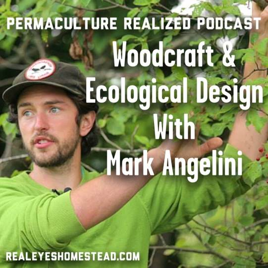 Permaculture Realized Podcast Episode 6, Woodcraft, Ecological Design, and Holistic Farm Integration with Mark Angelini