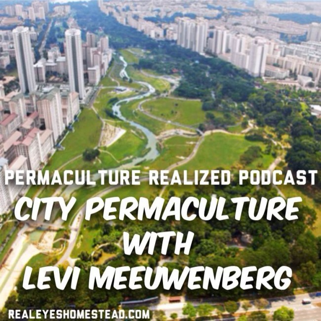Permaculture Realized Podcast Episode 9, City Permaculture, Design of Urban Landscapes with Levi Meeuwenberg