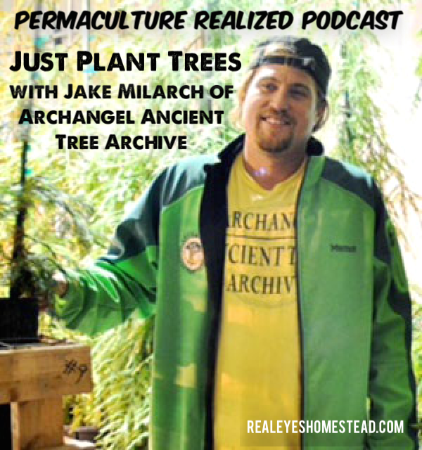 Permaculture Realized Podcast Episode 10, Just Plant Trees with Jake Milarch of Archangel Ancient Tree Archive
