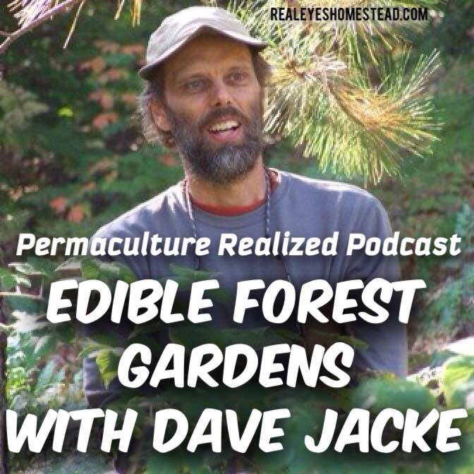 Permaculture Realized Podcast Episode 14, Edible Forest Gardens, Coppice, and Culture Design with Dave Jacke