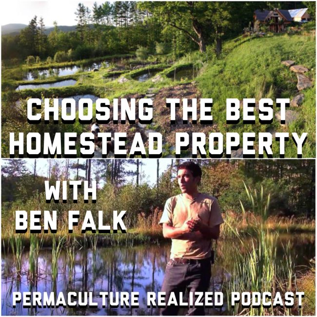 Permaculture Realized Podcast Episode 26, Choosing the Best Homestead Property with Ben Falk