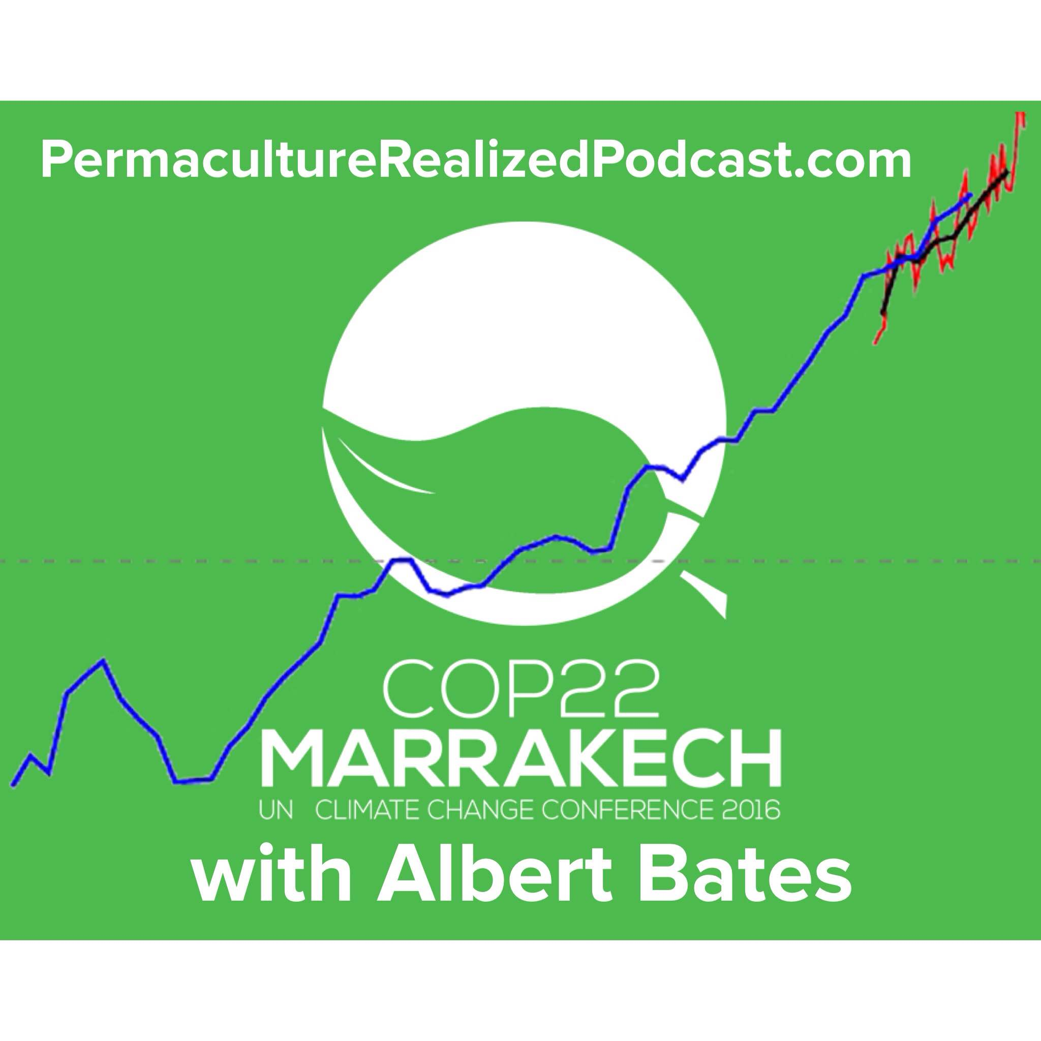 Permaculture Realized Podcast Episode 28, Inside COP22 Marrakech with Albert Bates