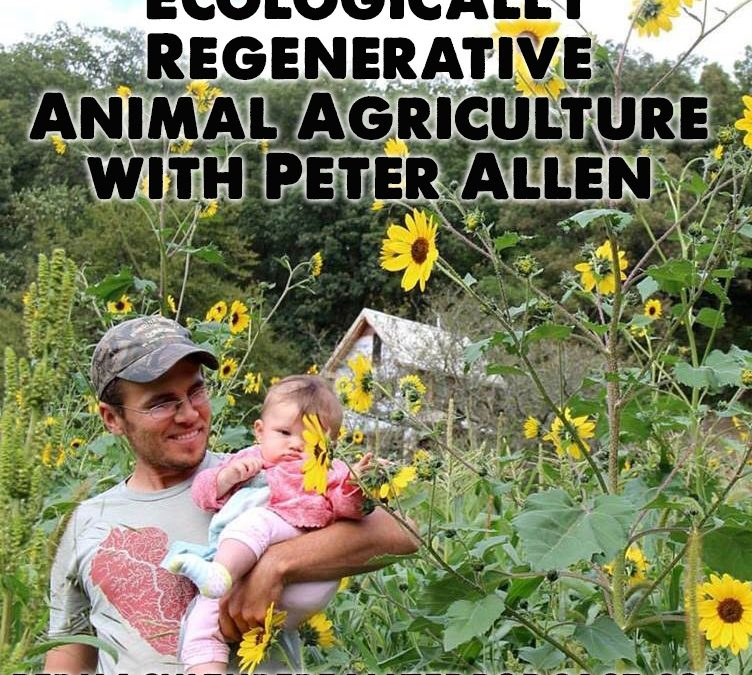 Permaculture Realized Podcast Episode 33, Ecologically Regenerative Animal Agriculture with Peter Allen